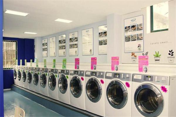 干洗店加盟需要多少钱投资多少